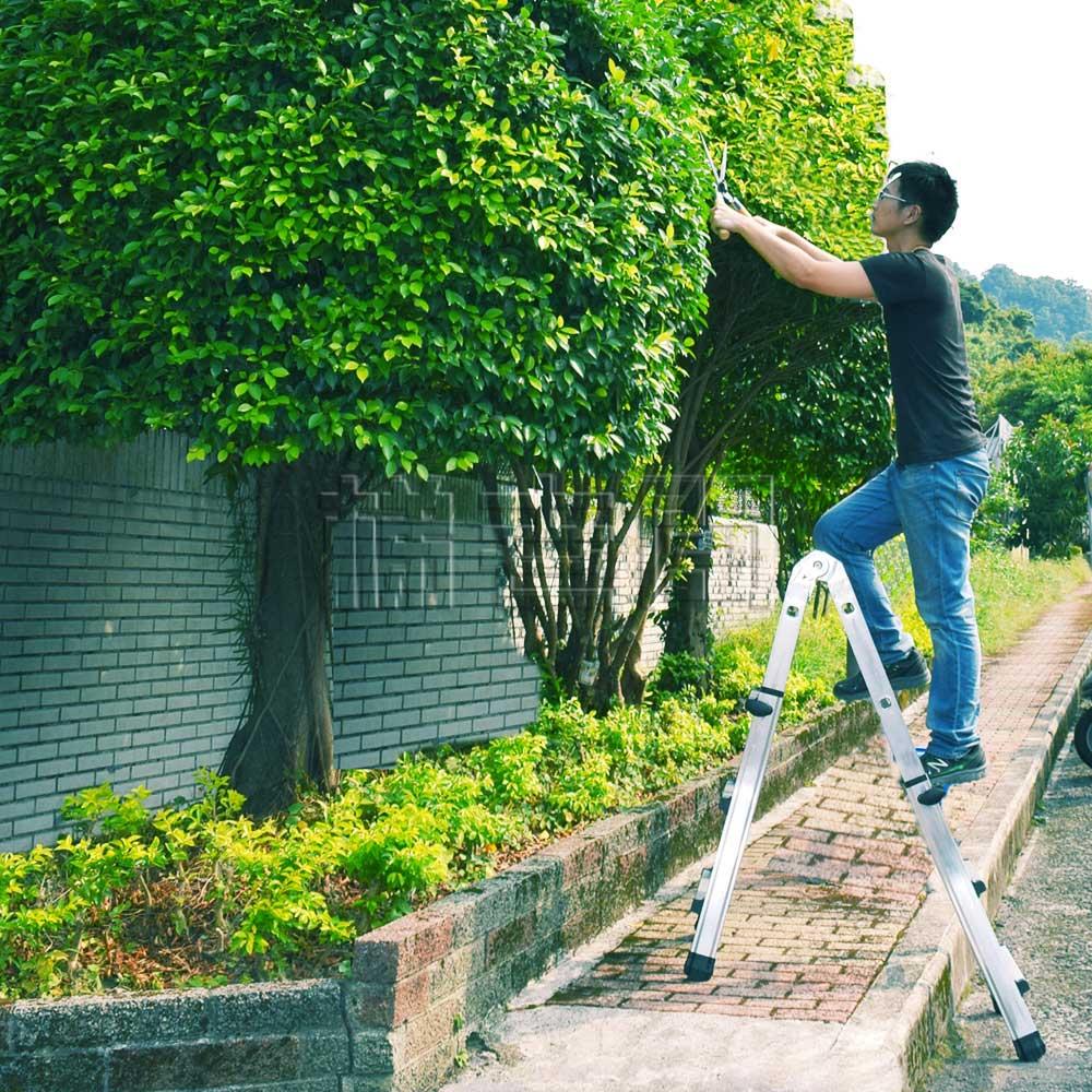 pruning trees. stairway ladder